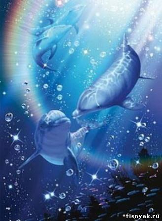 А дельфины добрые.